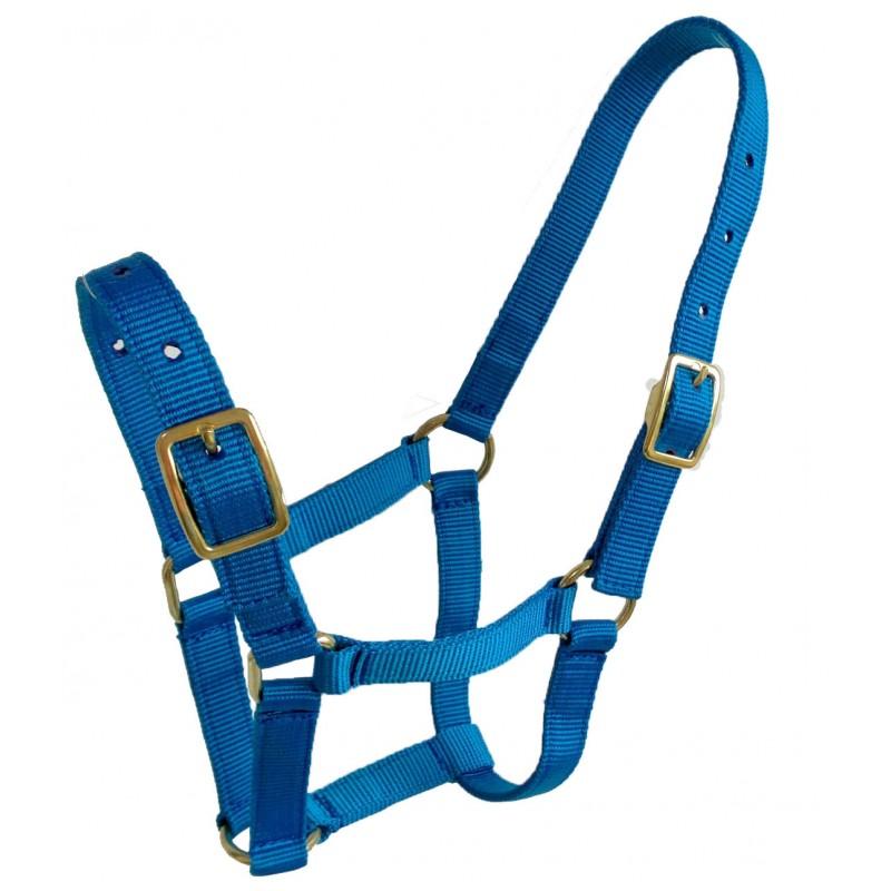 Nylon halter-Foal-2