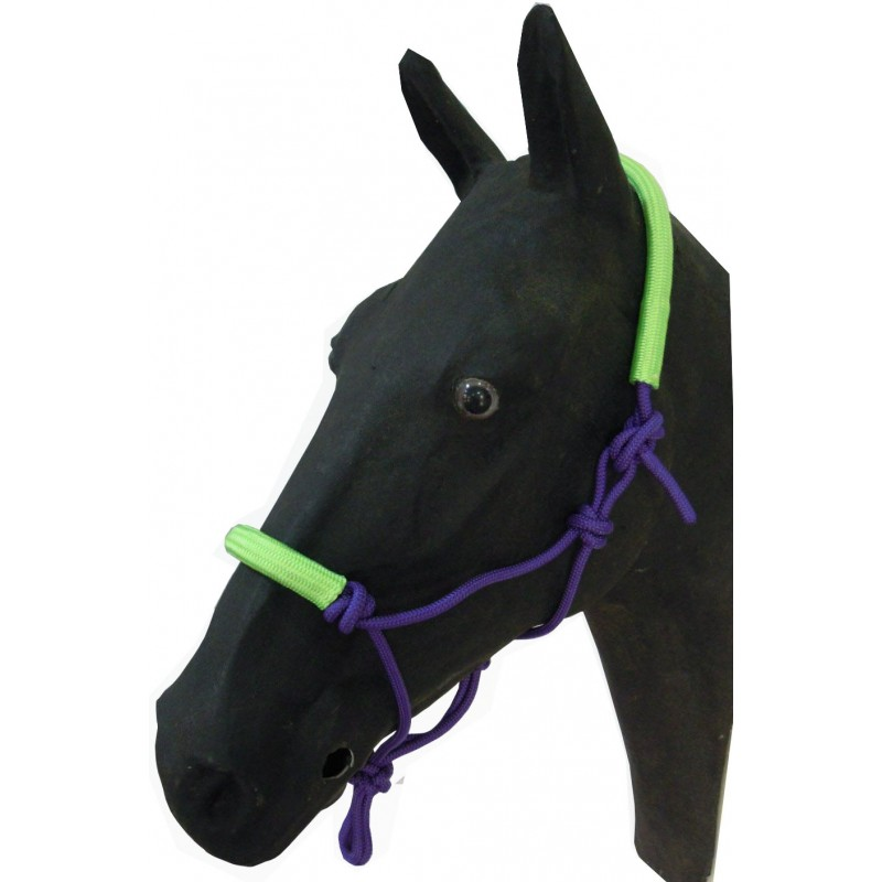 PP Rope Halter with noseband